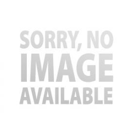 ORIGINAL LOTUS ELISE RIMS 5.5x16 (SILVER)