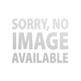 ORIGINAL LOTUS ELISE/EXIGE RIMS 6x16 (SILVER)